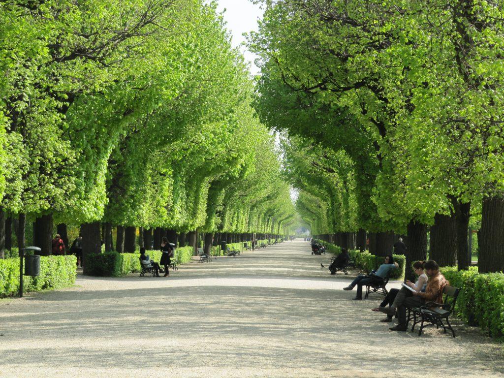 картинка парковая аллея создать свою литературную