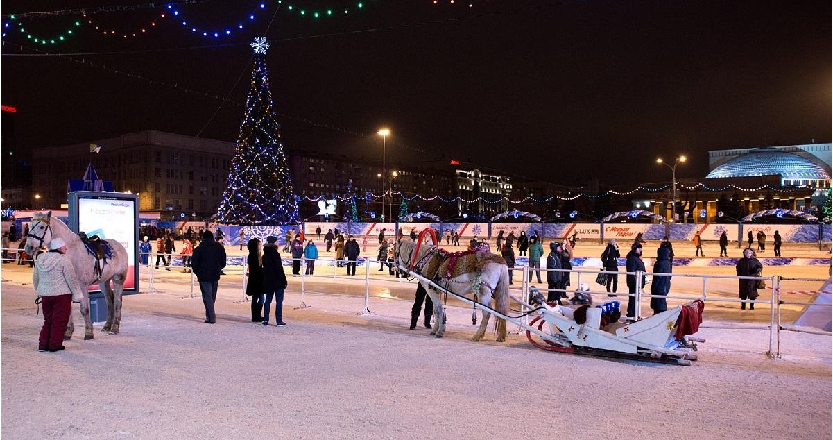 Программа мероприятий на Новый год в Новосибирске
