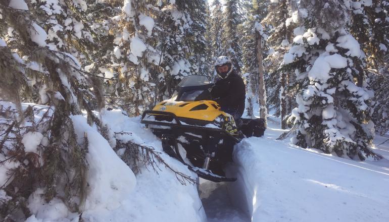 Катание на снегоходах Горнолыжный курорт Горная Саланга